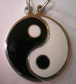 yin-yang partido